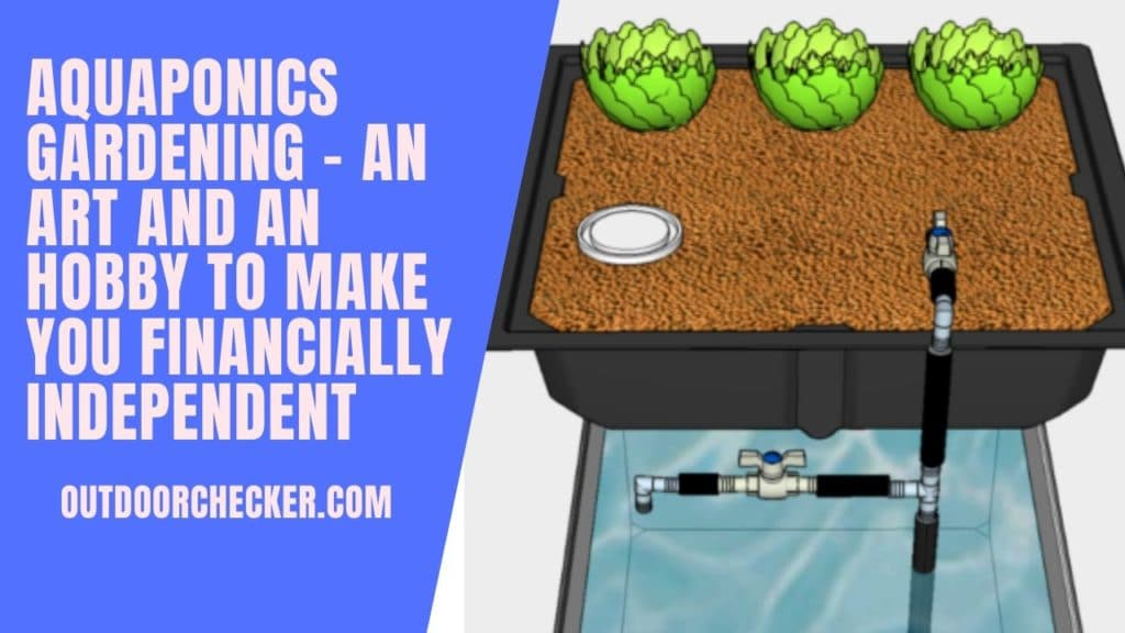 Aquaponics Gardening - An Art And An Hobby To Make You Financially Independent