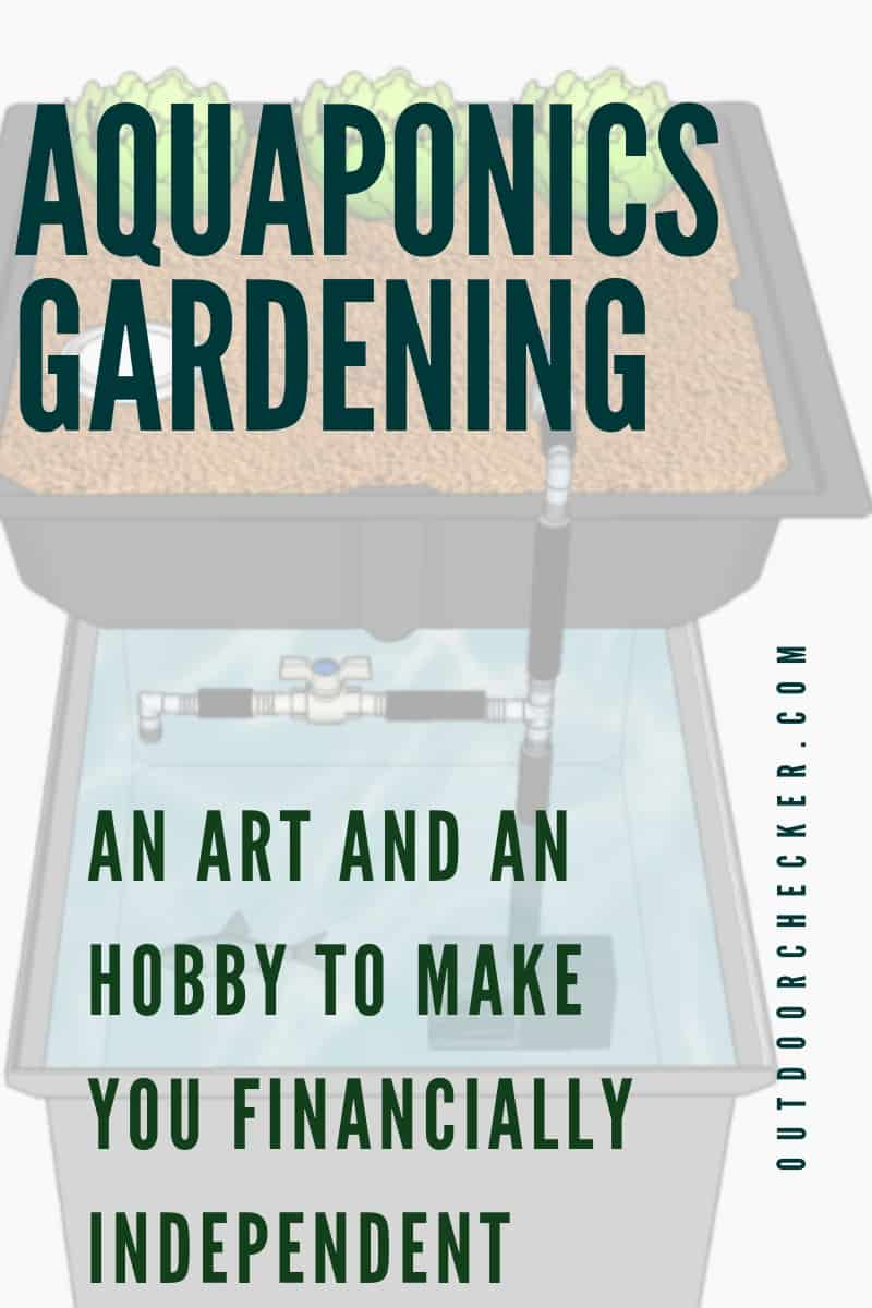 Aquaponics Gardening – An Art And An Hobby To Make You Financially Independent